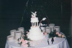 Wedding Destination Fairfax VA